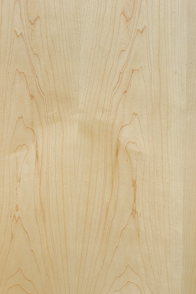 Plywood maple