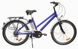WCE E approvata BicyclePC