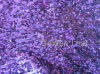 Volles Pattern Sequin Embroidery auf Mesh, Bright Purple (JPX1120)
