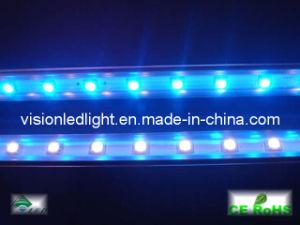 LED Bar Light (T5-30CM-18B-12V)