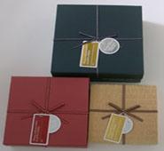 2010 New Paper Box (CS040)