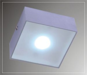 LED Ceiling Lights (LED-201211)