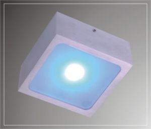 LED Ceiling Lights (LED-200911)