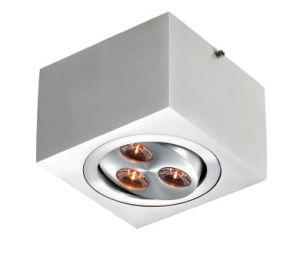 LED Ceiling Lights (LED-201711F)