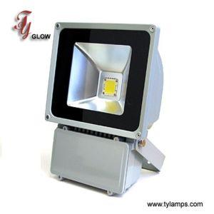 90W LED Flood Light (TY-FGBW90W-01)