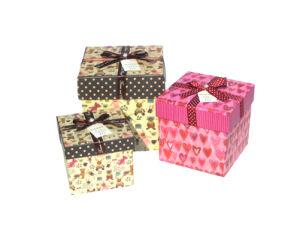 Gift Box (CSZ016)